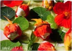 www.pincake.blox.pl